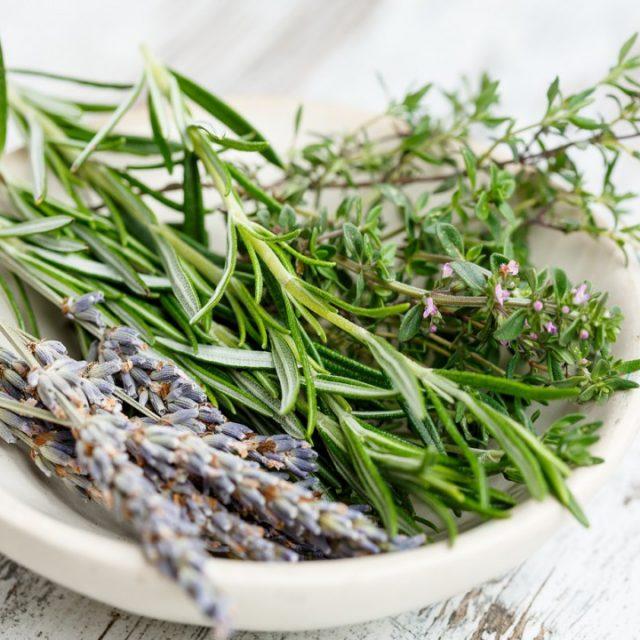 rosemary-herbs-benefits