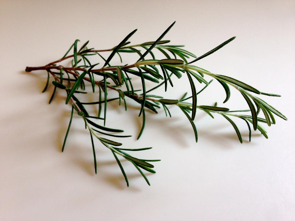 rosemary-leaves