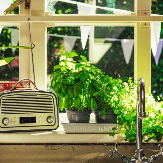 herbal-kitchen-garden