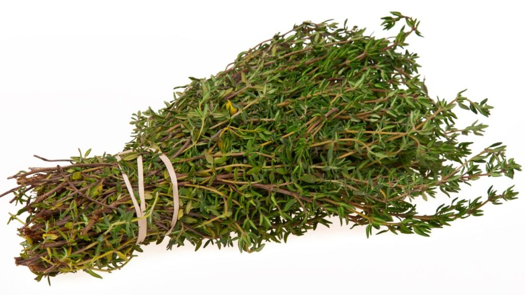 thyme-leaves-benefits